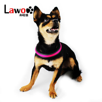 Rechargeable Airmesh Material Led Dog Harness , Easy Walk Dog Collar